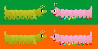 Centipede Stock Images