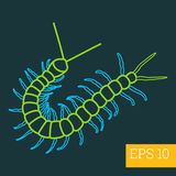 Centipede insect outline  Stock Image