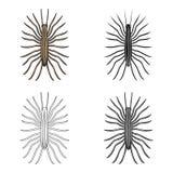 Centipede single icon in cartoon,black,outline,monochrome style for design.Pest Control Service vector symbol stock. Illustration Stock Photos