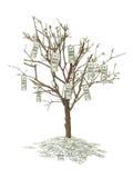 Cento alberi del dollaro Fotografia Stock Libera da Diritti