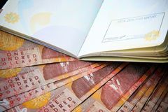 Cento banconote del denaro contante della Nuova Zelanda sulla tavola con la c rossa Fotografie Stock Libere da Diritti