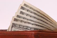 Cento fatture del dollaro in raccoglitore Fotografia Stock Libera da Diritti
