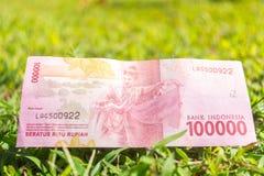 Cento mila biglietti della rupia su erba verde Fotografia Stock Libera da Diritti