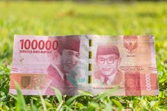 Cento mila biglietti della rupia su erba verde Fotografie Stock Libere da Diritti