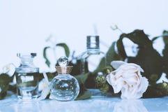 Centrów handlowych pachnidła z kwiatami fotografia royalty free