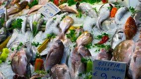 Свежие рыбы с приправой и овощи будучи проданным на Centr стоковые изображения