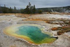Centraal Geiserbassin, Yellowstone, Wyoming, de V.S. Royalty-vrije Stock Afbeeldingen