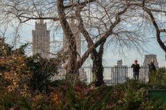Centraal park Stock Afbeeldingen