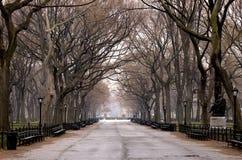 Centraal park Royalty-vrije Stock Foto's