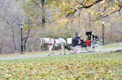 Centraal park stock fotografie