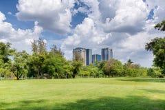 Centraal park bij zonnige dag royalty-vrije stock afbeelding