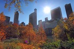 Centraal park bij zonnige dag, de Stad van New York royalty-vrije stock foto's