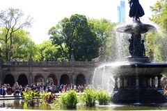 Centraal park in de lente Royalty-vrije Stock Afbeelding