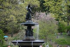 Centraal park in de lente Stock Afbeelding