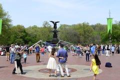 Centraal park in de lente Stock Foto