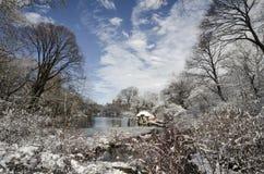 Centraal park in de winter Royalty-vrije Stock Foto