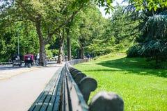 Centraal park N Y royalty-vrije stock foto