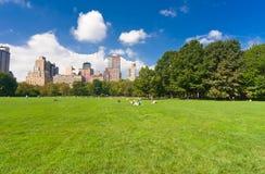 Centraal park in New York stock foto