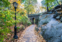 Centraal park in november stock afbeelding