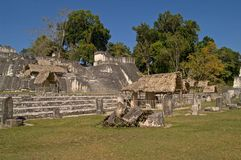Central Acropolis, Tikal Peten Royalty Free Stock Image
