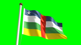 Central Africa flag stock video