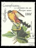 Central African Republic, Series Bierds. Central African Republic - stamp printed in1984, Series Bierds, Anniversary of the Birth of John J. Audubon, Coccyzus stock photo