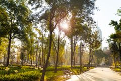Central Alameda park morning in Mexico city. In morning sunlight Royalty Free Stock Photos