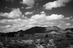 Central Arizona Desert Royalty Free Stock Images