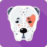 Central Asian Shepherd Dog icon flat design Stock Image
