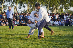 Central Asian Wrestling in Zeytinburnu. Istanbul, Turkey - July 31, 2016: in zeytinburnu district of Istanbul, Turkmen wrestling held in the coastal meadows Stock Photos