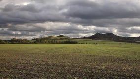 Central bohemisk Skotska högländerna, Tjeckien stock video