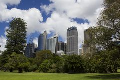 Central business district and Royal botanic garden trees stock image