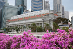 Central business district of Singapore with flowers Stock Images
