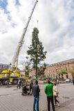 Central Christmas Tree Install in Place Kleber. STRASBOURG, FRANCE - OCT 30, 2017: Male couple looking at the Strasbourg Christmas Tree Install in central Place Stock Photos