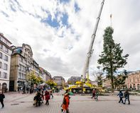 Central Christmas Tree Install in Place Kleber. STRASBOURG, FRANCE - OCT 30, 2017: Strasbourg preparing Christmas Tree Install in central Place Kleber Square by Royalty Free Stock Images