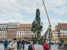 Central Christmas Tree Install in Place Kleber. STRASBOURG, FRANCE - OCT 30, 2017: Tall Strasbourg Christmas Tree Install in central Place Kleber Square by Stock Image