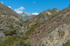Central coastal mountains stock images