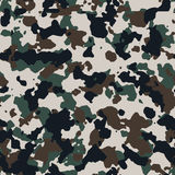 Central Europe seamless  camo pattern. Texture Stock Photo