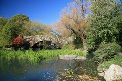 central fallpark Royaltyfri Fotografi