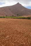 Central Fuerteventura,  Barranco de las Penitas Royalty Free Stock Image