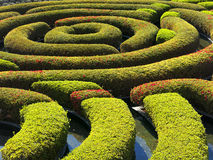 The Central Garden at the Getty Center. Getty Museum Central Garden Hedge Spiral or Floating Maze in Los Angeles, California, USA Royalty Free Stock Photography