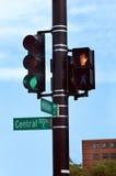 central gata Arkivfoton