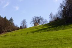 Central German Uplands. On easter springtime holiday with blue sky and green fields forest trees Stock Image