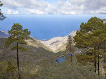 Central Gran Canaria in January Stock Images