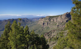 Central Gran Canaria in January Stock Photos