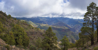 Central Gran Canaria in January Stock Photography