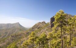 Central Gran Canaria Stock Photo