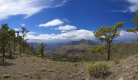 Central Gran Canaria, Nature Reserve Inagua Stock Photography