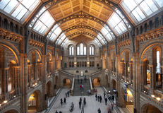 Central Hall of the Natural History Museum, London Royalty Free Stock Photo
