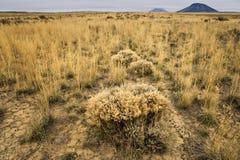 Central Idaho desert Stock Photo